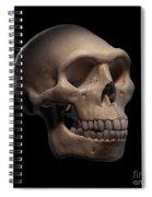 Homo Erectus Skull Spiral Notebook