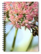 Honey Bee 2 Spiral Notebook