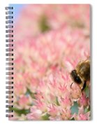 Honey Bee 3 Spiral Notebook