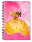 Honey Bee Collecting Pollen Spiral Notebook