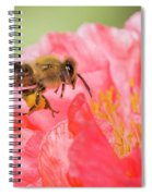 Honey Bee In Flight Spiral Notebook
