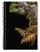 Honey Bee Kick, Apis Mellifera Spiral Notebook