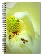 Honey Bees And Magnolia II Spiral Notebook