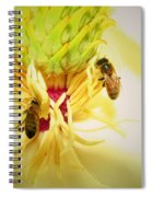 Honey Bees And Magnolia Spiral Notebook