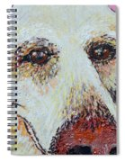 Honey Love Spiral Notebook