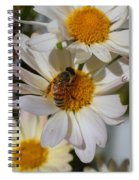 Honeybee And Daisy Mums Spiral Notebook