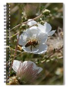 Honeybee Gathering From A White Flower Spiral Notebook