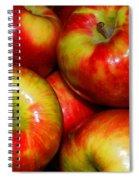Honeycrisp Apples Spiral Notebook