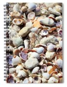 Honeymoon Island Shells Spiral Notebook
