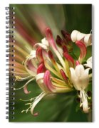 Honeysuckle Breeze Spiral Notebook