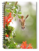 Honeysuckle Hummer Spiral Notebook