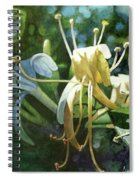 Honeysuckle Sun Spiral Notebook