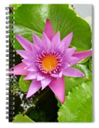 Honolulu Water Lily Spiral Notebook