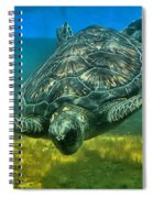 Honu Spiral Notebook