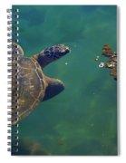 Honu Having Lunch Spiral Notebook