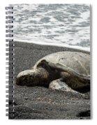 Honu Sleeping On The Shoreline At Punalu'u Spiral Notebook