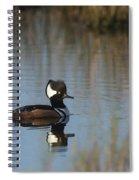Hooded Merganser In The Early Morning Light Spiral Notebook
