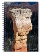 Hoodoo In Bryce Canyon Spiral Notebook