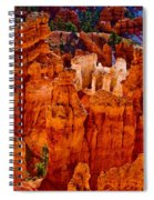 Hoodoos Bryce Canyon Spiral Notebook