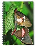 Hook Up Spiral Notebook