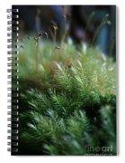 Hoomalumalu Kuhiwa Spiral Notebook