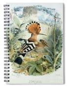 Hoopoe Spiral Notebook