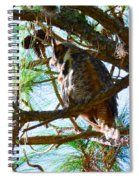 Hoot Is Down There? Spiral Notebook