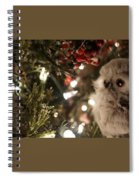 Hooty Owl Spiral Notebook