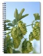 Hop Cones Spiral Notebook
