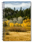 Hope Valley Spiral Notebook