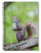 Hopes And Wishes Spiral Notebook