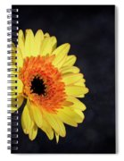 Hopes Spiral Notebook
