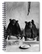Hopi Grinding Grain, C1906 Spiral Notebook