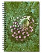 Hops Leaf, Sem Spiral Notebook