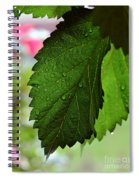 Hops Leaves Spiral Notebook
