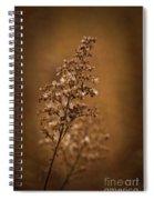 Horicon Marsh - Wildflower Golden Glow Spiral Notebook