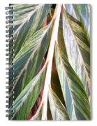 Horizon Of Palm Spiral Notebook