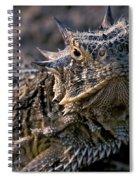 Horn Toad Spiral Notebook