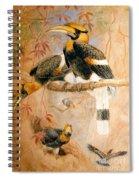 Hornbill  Spiral Notebook