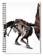 Horned Dinosaur Skeleton Spiral Notebook