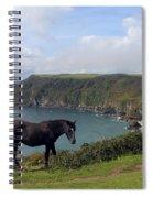 Horse Along Coastal Path Cornwall Spiral Notebook