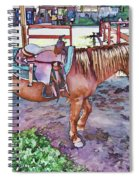 Horse At Zoo Spiral Notebook