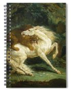 Horse Attacked By A Lion Spiral Notebook