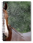 Horse Bath I Spiral Notebook
