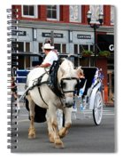 Horse Carriage In Nashville Spiral Notebook