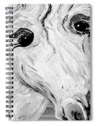 Horse Eyes Spiral Notebook