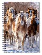 Horse Herd In Snow Spiral Notebook