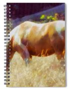 Horse In Field Spiral Notebook