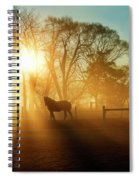 Horse In The Fog At Dawn Spiral Notebook