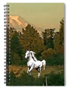 Horse Mountain And Barn Spiral Notebook